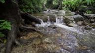 Huay Saai Leung Waterfall video