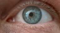 ECU Human blue eye wide open video