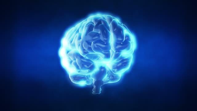 Human Brain | Loopable video