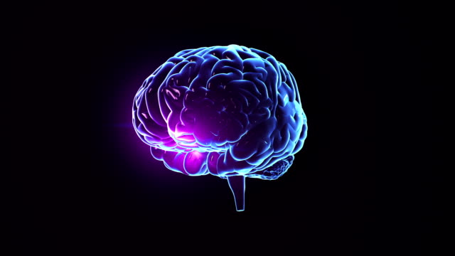 Human brain with neuronal impulses. Spinning. Loopable. Blue. video