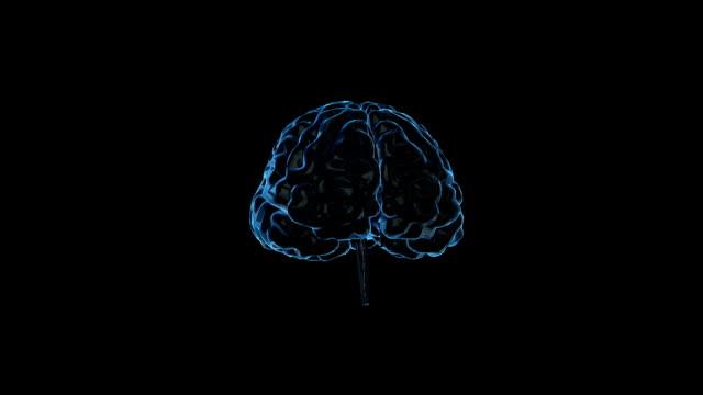 Human brain with neuronal impulses. video