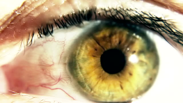 Human eye ball with dilating pupil Stylized Effect video