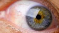 Human eye. Close up. video