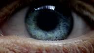Human eye video