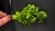 SLOW: Human hand cut a parsley and it flies away video