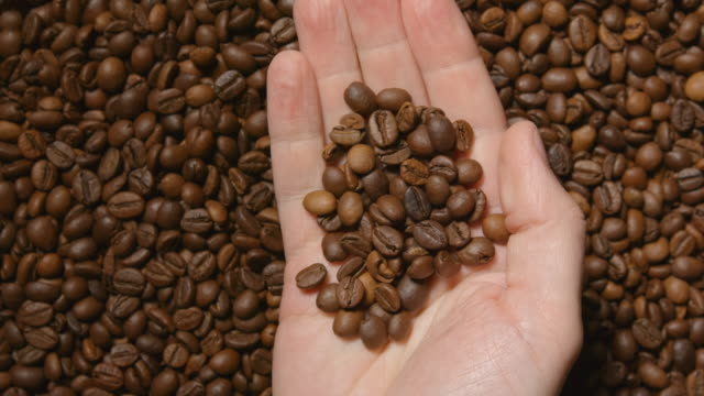 TOP VIEW: Human hand takes a roasted coffee beans video