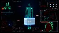 Human skeletal, blood vascular system inside scanning Human medical display. video