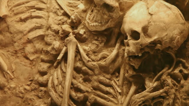 Human skeleton in ancient grave video