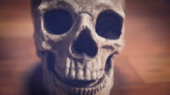 Human Skull dolly parallax, shallow DOF. Vintage colors video