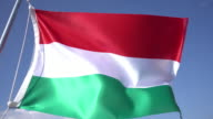 Hungarian Flag video