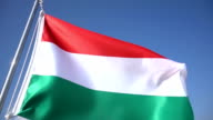 Hungarian Flag video