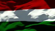 Hungary Flag video
