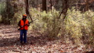 hunter in woods aims gun front angle WS video