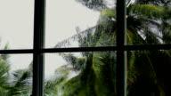 Hurricane - Storm video