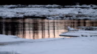 Ice drift on the river video