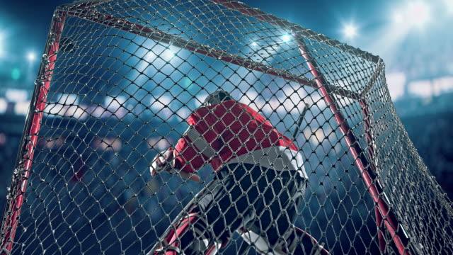 Ice Hockey Goalie video