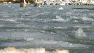 Ice video