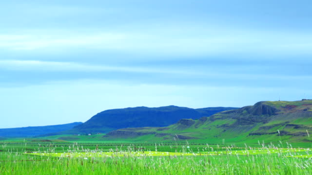 Icelandic Landscape in the morning video