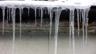 Icicle Melting (HD) video