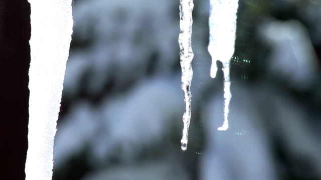 Icicles Melting: Spring video