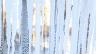 Icicles to Outdoor Thermometer Displaying Negative Temperature video