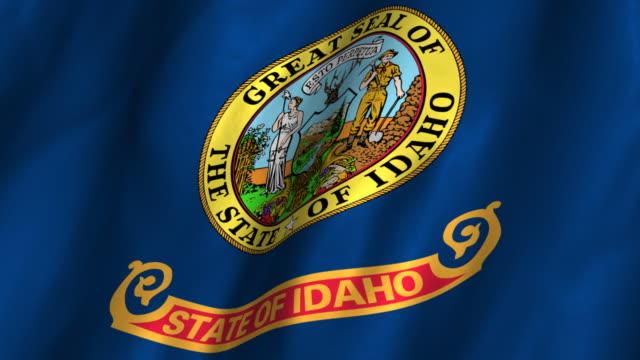 Idaho State Flag - waving. looping video