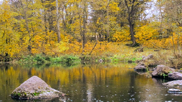 Idyllic autumn water landscape video