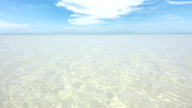 Idyllic tropical beach, with transparent water. video