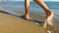 Idyllic walking on beach video