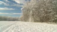 HD SLOW MOTION: Idyllic Winter Scene video