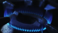 Ignition gas flame video