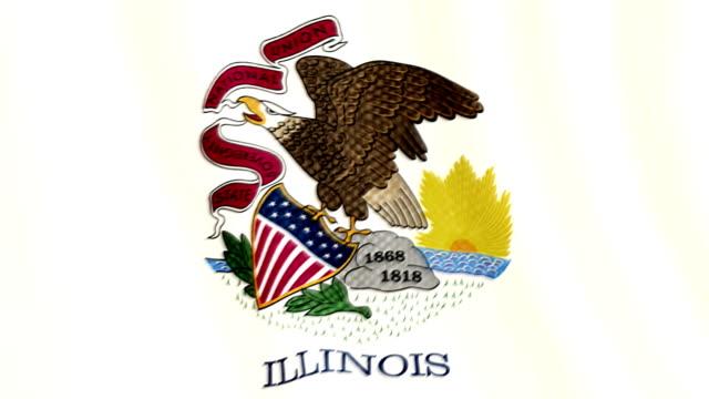 Illinois flag waving animation video