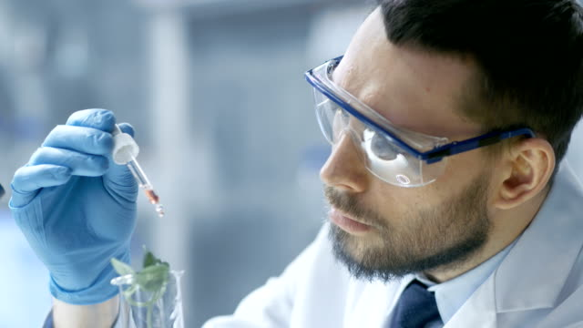 In a Modern Laboratory Food Scientist Conducts Experiments by Synthesising Compounds with use of Dropper and Plant in a Test Tube. video