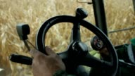 In the cab of combine harvester gathering corn video