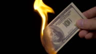 Incineration of $ 100 bills on a black background. Slow mo, slo mo video
