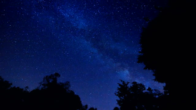 Incredible night stars Milky way time lapse with forest trees foreground video