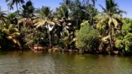 India,  bank of the Kerala backwaters video