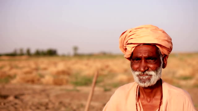 Indian sadhu portrait outdoor in the nature video