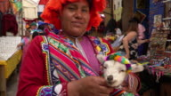 Indigenous Peruvian woman with baby Alpaca in Pisac market, Cusco video