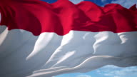 Indonesia Flag video