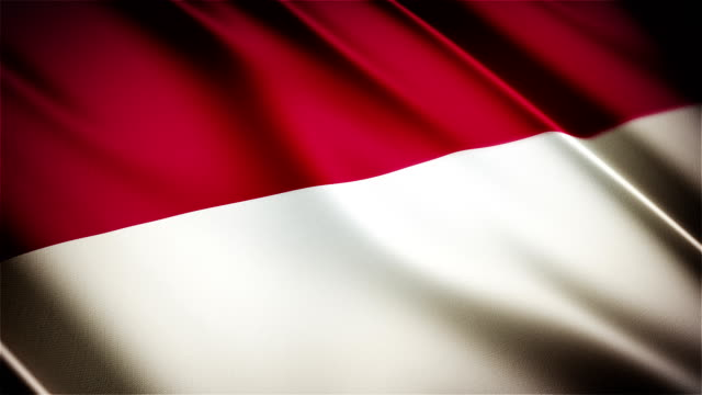 Indonesia / Monaco realistic national flag seamless looped waving animation video