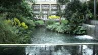Indoor Garden and Greenhouse. video