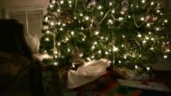 Indoor Tree video