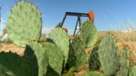 Industrial jack pump platform working on oil field behind cactuses video