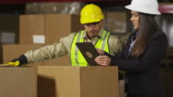 Industry workers using digital tablet in shipping warehouse video
