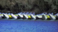 1964: Inflatable river rafting kayaks beached on water banks. video