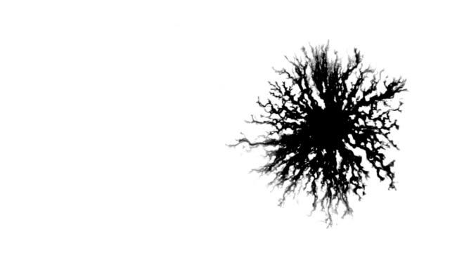 Ink splatter 1 video