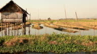 Inle Lake Floating Gardens House video