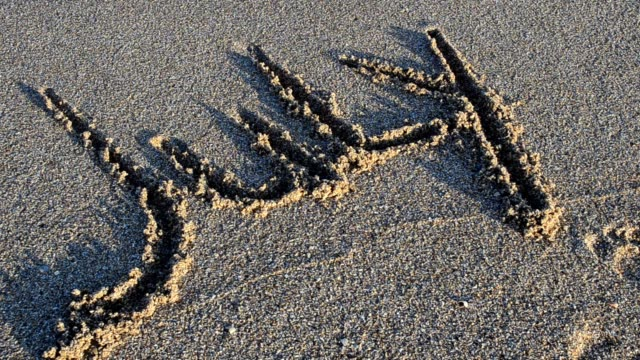 Inscription July on sand. The inscription is washed away by a sea wave. video