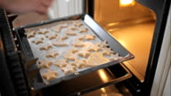 Inserting pan with gingerbread into the oven video